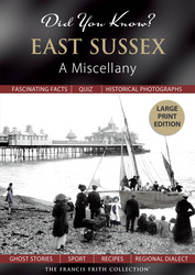 Cover image of Did You Know? East Sussex