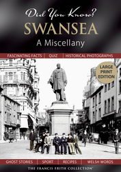 Cover image of Did You Know? Swansea