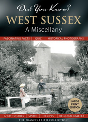 Cover image of Did You Know? West Sussex